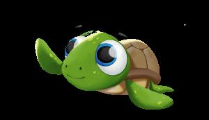 turtle_pnga